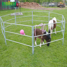 Pertanian multifungsi Galvanized Portable Horse Fence