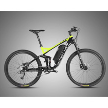OEM High Quality Mountain Electric Bicycle with Disc Brake