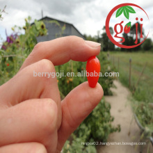 Certificate Organic Goji berries Wholesale