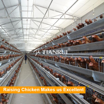 Una jaula de pollo de aves de corral tipo batería para gallinas ponedoras