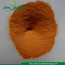 Spray Dried Goji berry juice Powder