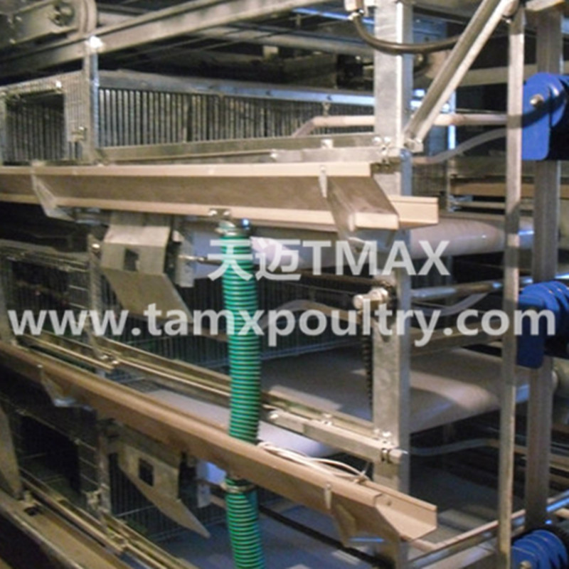 H Type Broiler Cage