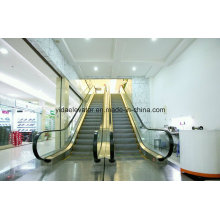 Escalator in Supermarket