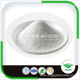 High quality Glycocyamine Guanidineacetic Acid
