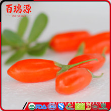 Reasonable price goji berries dried goji red goji