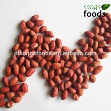 2014 Jilin vier rote Haut Erdnuss Kernel
