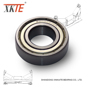 6204ZZ+Bearings+For+Conveyor+Idle+Rollers