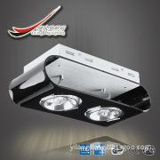AR111/black acrylic 2 light,adjustable downlight.top quality.CB CE