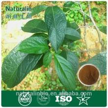 green feed additive - Eucommia Ulmoides P.E.
