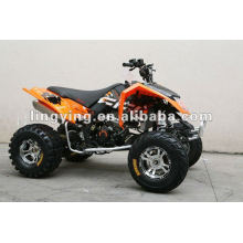 EEC 300CC estándar adulto quads moto/quad