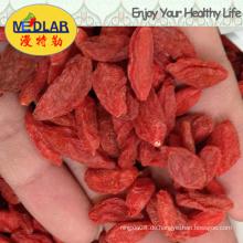 Bio Organic Nutrious Goji Beere