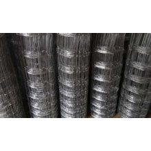 Galvanized Field Fence/ Cattle Fence (7/150/813/50)