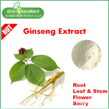 ODM for Korean Ginseng Extract Pure Natural Panax Ginseng Extract powder supply to Peru Manufacturers