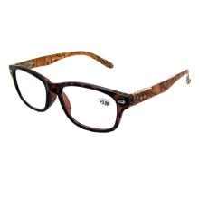 Attractive Design Reading Glasses (R80545)