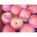 138 yantai rouge fuji apple