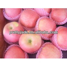 138 yantai red fuji apple