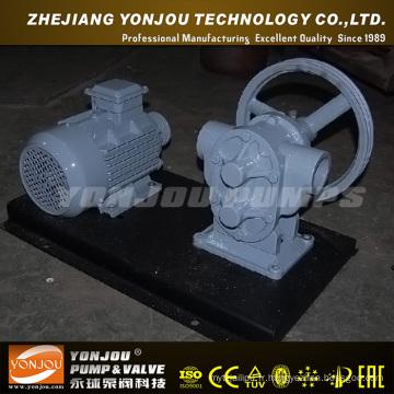 Pompe à eau entraînée par courroie Yonjou (BP)