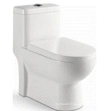Chine Salle de bain Toilette en une pièce en céramique (6511)