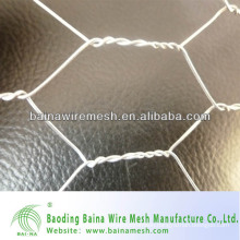 hexaagonal wire mesh/straight twist for hexaagonal wire mesh