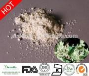 Natural White Fine Powder 99% Resveratrol Extract CAS NO.501-36-0