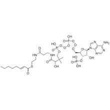 S-[2-[3-[[4-[[[(2R,3S,4R,5R)-5-(6-aminopurin-9-yl)-4-hydroxy-3-phosphonooxyoxolan-2-yl]methoxy-hydroxyphosphoryl]oxy-hydroxyphosphoryl]oxy-2-hydroxy-3,3-dimethylbutanoyl]amino]propanoylamino]ethyl] (E)-oct-2-enethioate CAS 10018-94-7