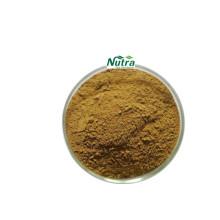 Polvo de extracto seco orgánico de Morchella Esculenta