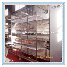 La Chine offre des cages à bas prix à prix réduit pour les poulets / couches d'oeufs