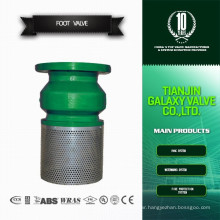 Hight Quality CE approved screen foot valve with strainer