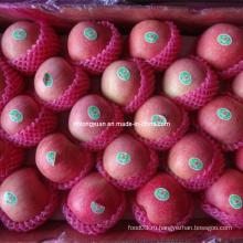 Упакованные в 20 кг коробки свежие Qinguan Apple