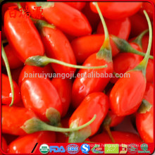 2016 Hot sale dried goji berry with high quality