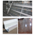 Automatic A Type Broiler Cage