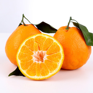 Fresh orange fruit green as export oranges