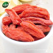Jiangnanhao goji berry nixai goji séché goji avec bon prix