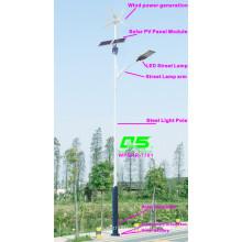 WPSRR-7701 3~15m Municipal Road Hot DIP Galvanized Steet Light Pole style
