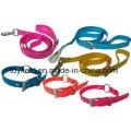 Haustier Produkt Blei Leine Katze Hundehalsband Haustier Versorgung