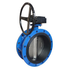 Concentric Flanged Vulcanized Butterfly Valve with Gear Operator