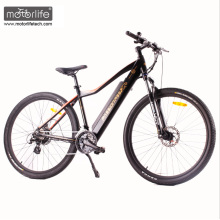 1000w BAFANG mid drive New Design electric road bike with hidden battery, electric mountain bicycle