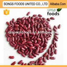 Weiße und rote Bohnen der Sojabohnen