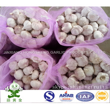 Chinese Fresh Normal White Garlic New Crop 2016 Comes