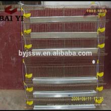 Ei-Wachtel-Geflügel, das Quail-Ausrüstung für Verkauf bewirtschaftet