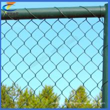 50 X50mm PVC revestido Chain Link Wire Mesh