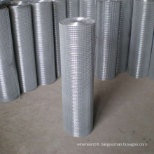 Welded Steel Wire Mesh for Sale