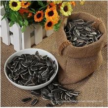 Großhandel Top-Qualität Bulk-Sonnenblumenkerne aus der Inneren Mongolei