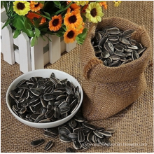 Wholesale top high quality bulk sunflower seeds from Inner Mongolia