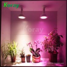 Crescer Melhor Orquídeas E27 Lâmpada Par38 15W LED Grow Light