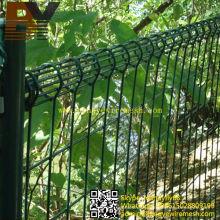 PVC recubierto galvanizado bucle doble malla de alambre valla