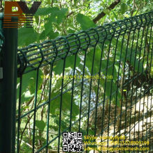 PVC Coated Galvanized Double Loop Wire Mesh Fence