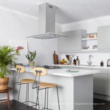 Plans de travail simples de cuisine de maison de conception et comptoir de barre