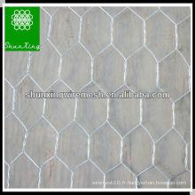 Grande maille Hexagonal
