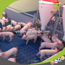 Vente chaude Chaude Galvanzied Tuyau Équipement D'élevage De Porc Weaner Pening
